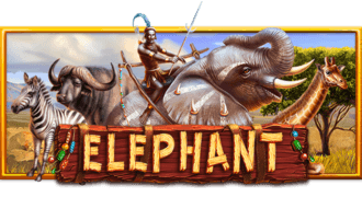 สล็อต elephant จาก ufaslot