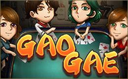 Gao Gae (เก้าเก)